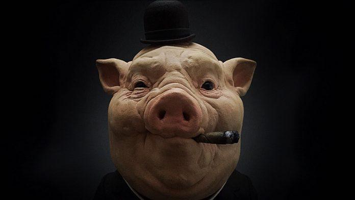 svinia mafia1